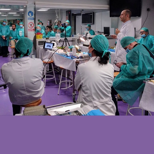 """Hands-On cadaver Intensive Course in Advanced Implant"""